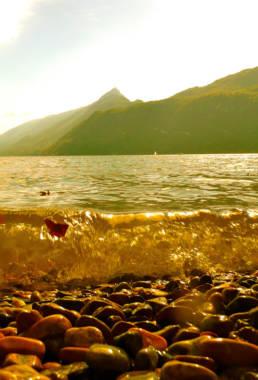 Photographe-professionnel-nature-savoie- lac du bourget