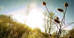 Rando-Photo-Nature-jean-gaschet-photographe-pro-chambery-aix-1